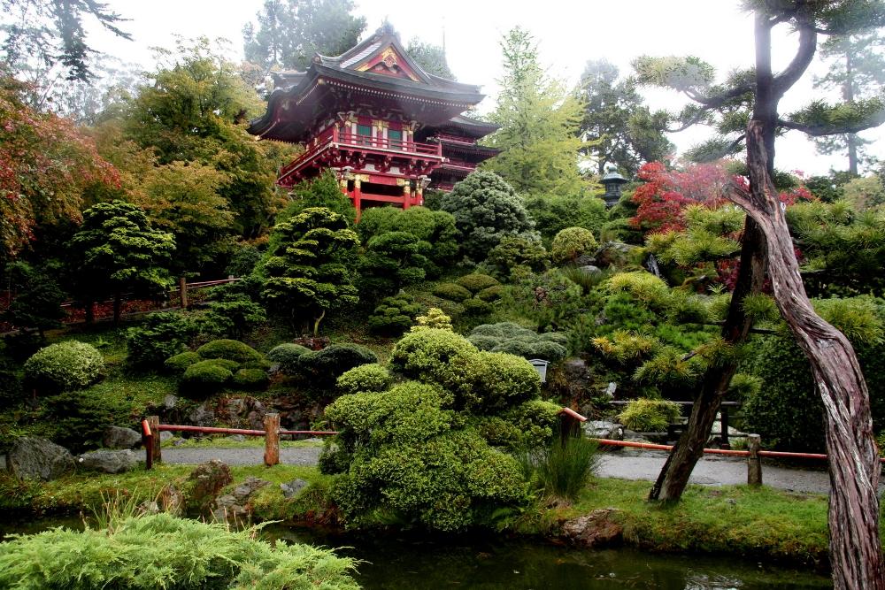 T japon s en san francisco viajes y for Jardin japones hagiwara de san francisco