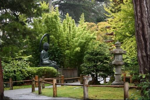 Té japonés en San Francisco